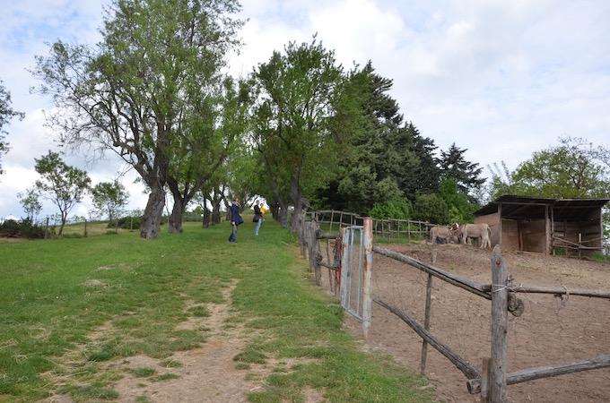 fattoria didattica a bologna